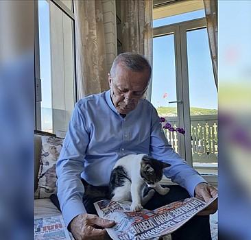 Erdoğan, torununun kedisiyle fotoğraf paylaştı