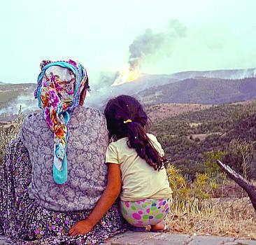 'Yeşil Vatan'da yanan sadece ağaç değil...