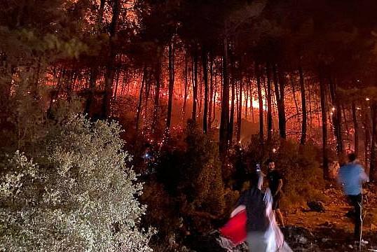 Fethiye'de orman yangını başladı