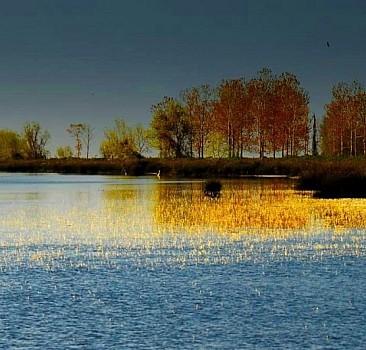 Kızılırmak Deltası'nda bahar hareketliliği