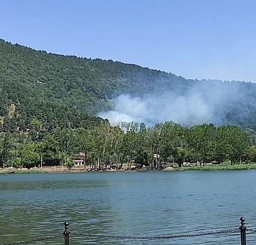 İzmir Ödemiş'te yangın çıktı
