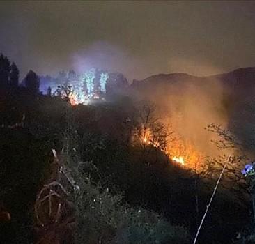 Rize'de orman yangını