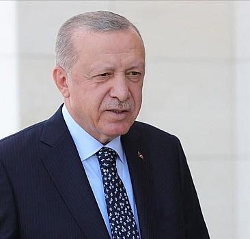 Erdoğan'dan 'siyasi cinayet' iddialarına cevap!