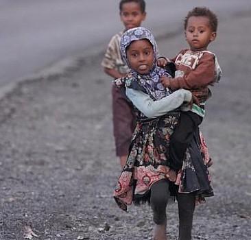 Uluslararası Yemen Heyeti'nin görevinin uzatılmamasına tepki
