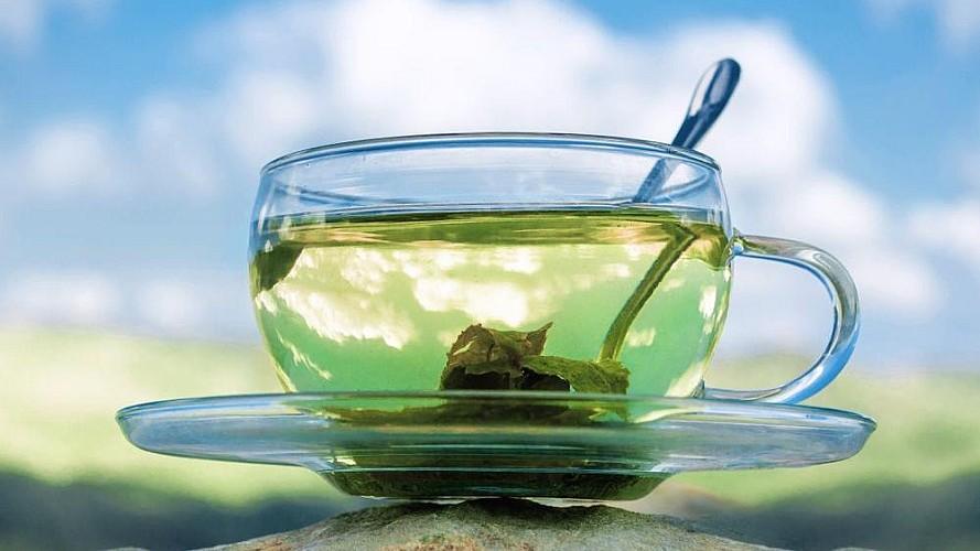 Yeşil çay neye iyi gelir?