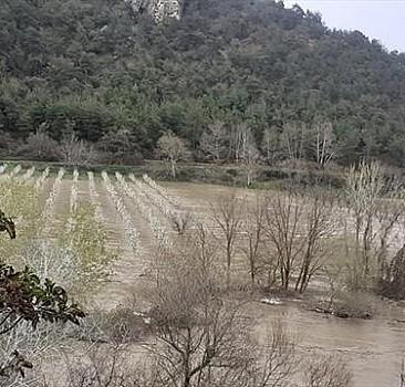 Göksu taştı: Tarım arazileri su altında kaldı