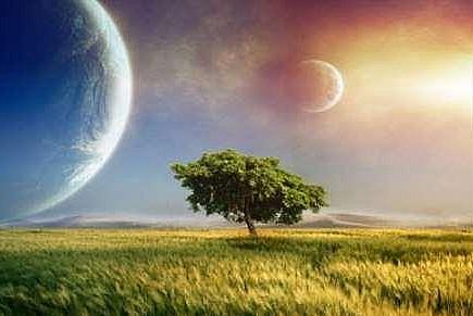 İnsanlık çizgisi ÂHİRET hayatı