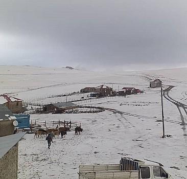 Ordu'da mevsimin ilk karı yaylaları beyaza bürüdü