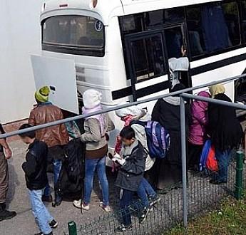 Kırklareli'nde 11 sığınmacı yakalandı