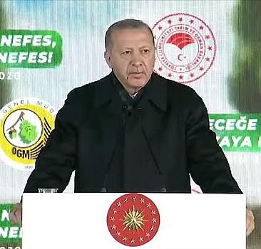 Başkan Erdoğan fidan dikim töreninde konuştu