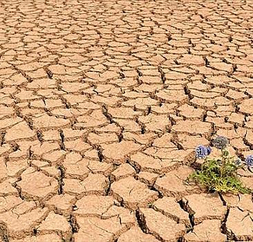 Küresel ısınmaya karşı önemli rapor