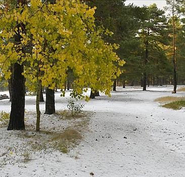 Kars'a yağan dolu kışı aratmadı