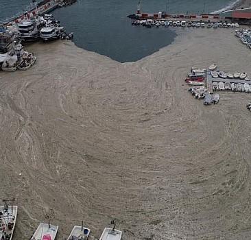 Uzmanlar, Marmara'daki sorunu MİLAT'a değerlendirdi