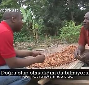 İlk kez çikolata tadan kakao işçilerinin tepkileri